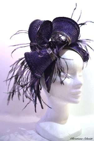 Bibi-plumes-violet